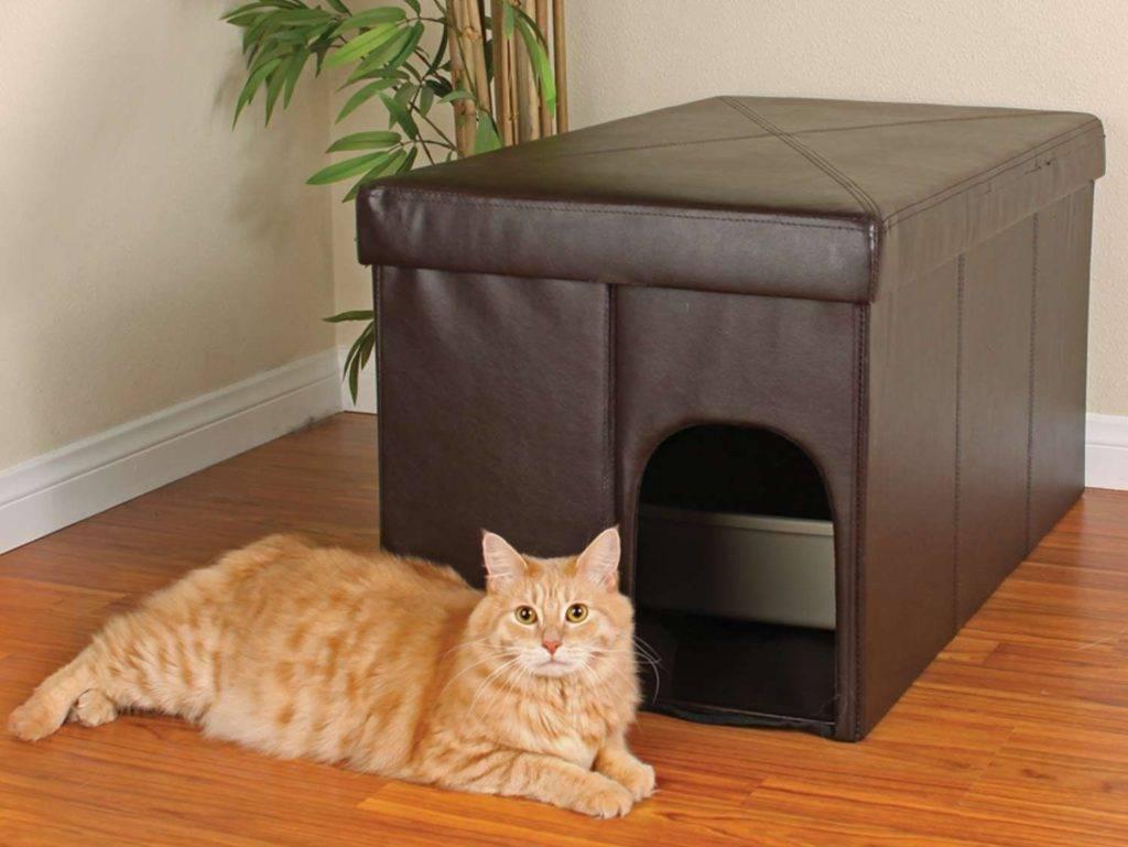 Лоток для кошек (52 фото): выбираем кошачий туалет, пакеты и совок, размеры угловых и других разновидностей
