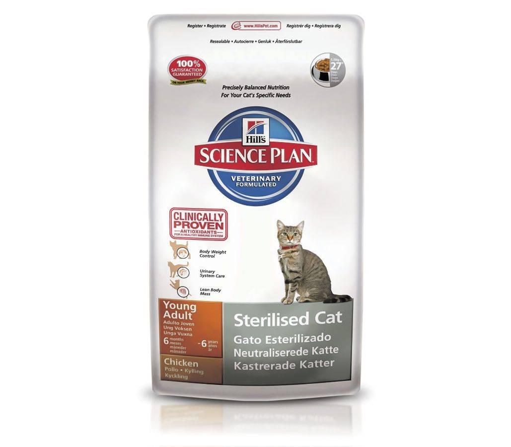 Корм для кошек хиллс (hill's) - отзывы, состав и советы ветеринаров