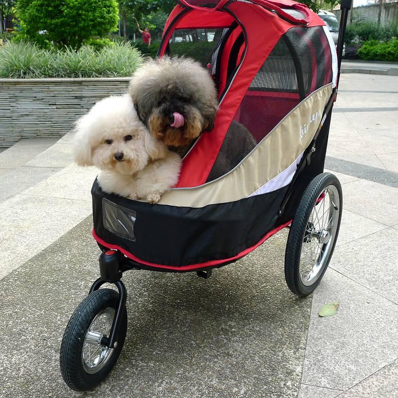 Разновидности сумок переносок для собак разных пород