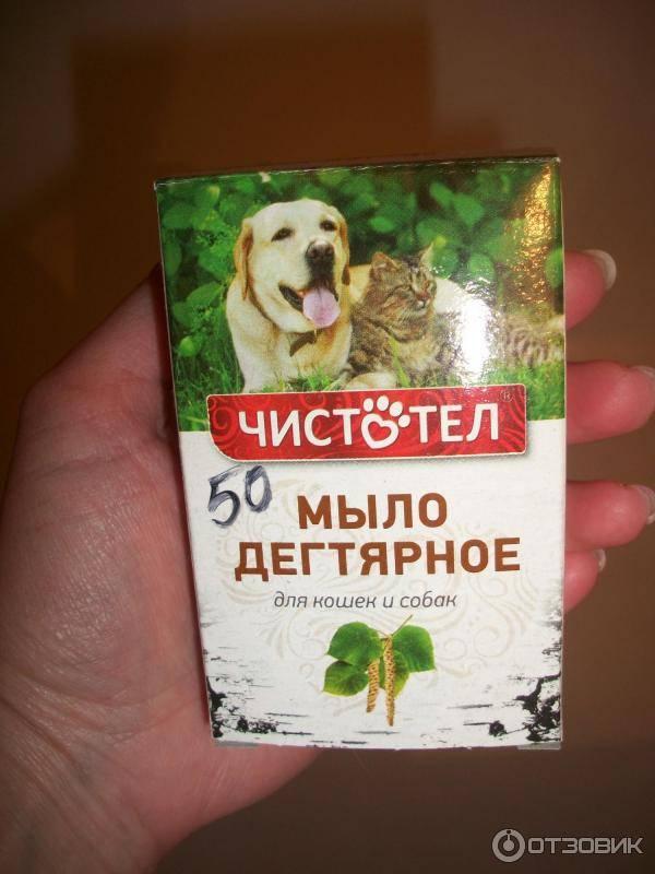 Дегтярное мыло – эффективное народное средство от блох у кошек