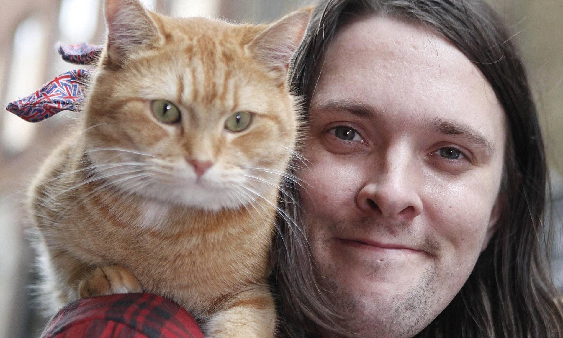 15 героических котов, которые спасли жизнь своим хозяевам