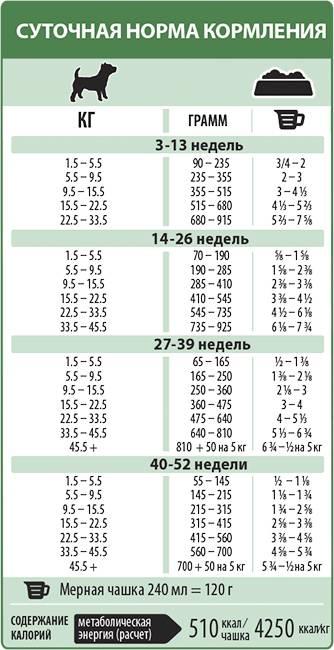 Норма сухого корма для щенков: таблица расчета, кратность и правила кормления