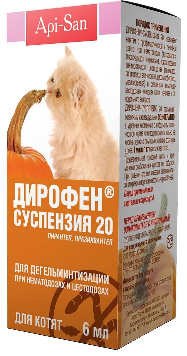 Дирофен для кошек:  антигельминтный препарат