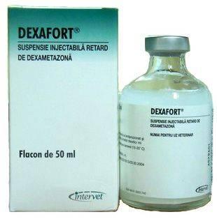 Дексафорт (суспензия для инъекций) для собак и кошек | отзывы о применении препаратов для животных от ветеринаров и заводчиков