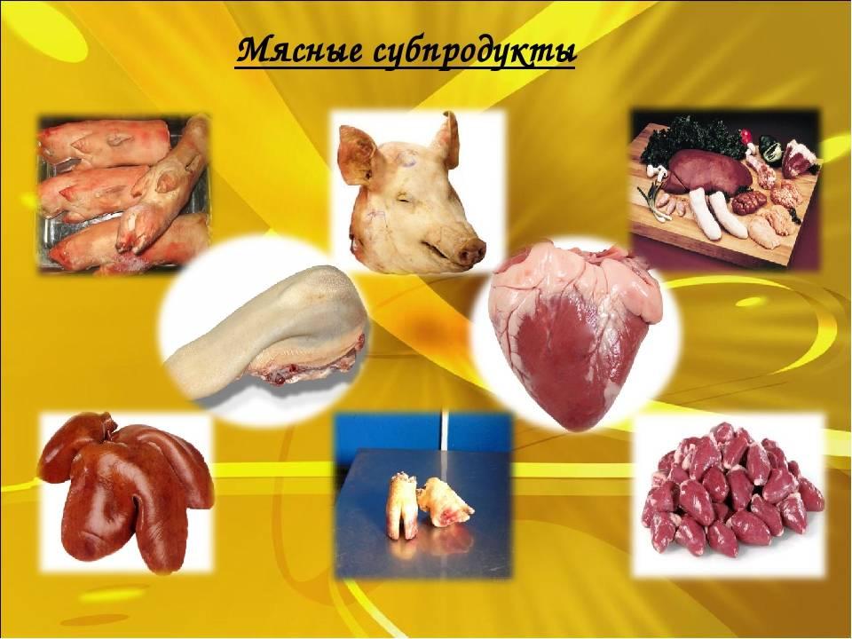Субпродукты в рационе собак