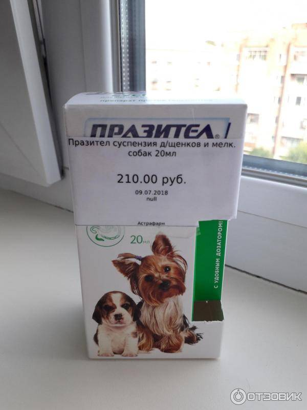 Гельминтозы собак и кошек. празител – антигельминтик широкого спектра действия