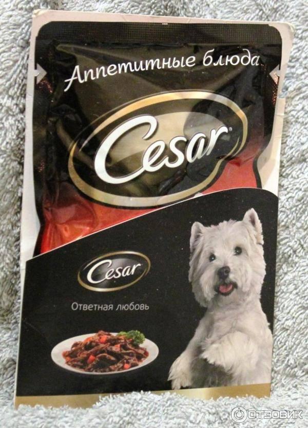 Корм для собак цезарь (cesar): состав, цены, отзывы