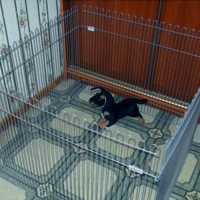 Вольер для собаки в квартире: как создать безопасное место для домашнего питомца
