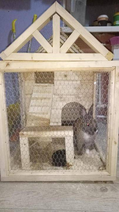 Как сделать крольчатник: подробное описание постройки и обустройства крольчатника (110 фото + видео)