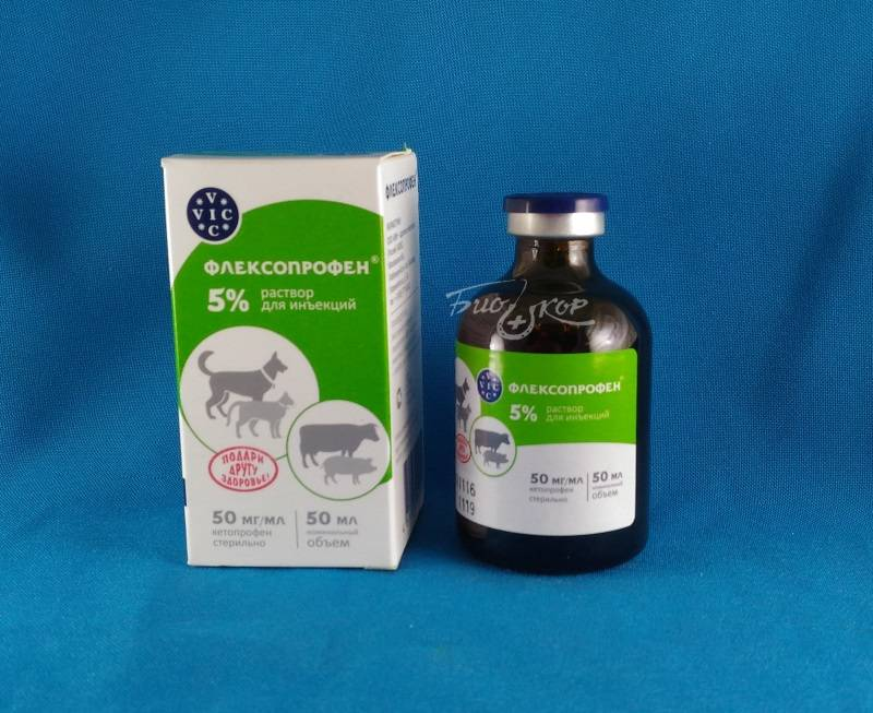 Флексопрофен для кошек: инструкция и показания к применению, отзывы, цена