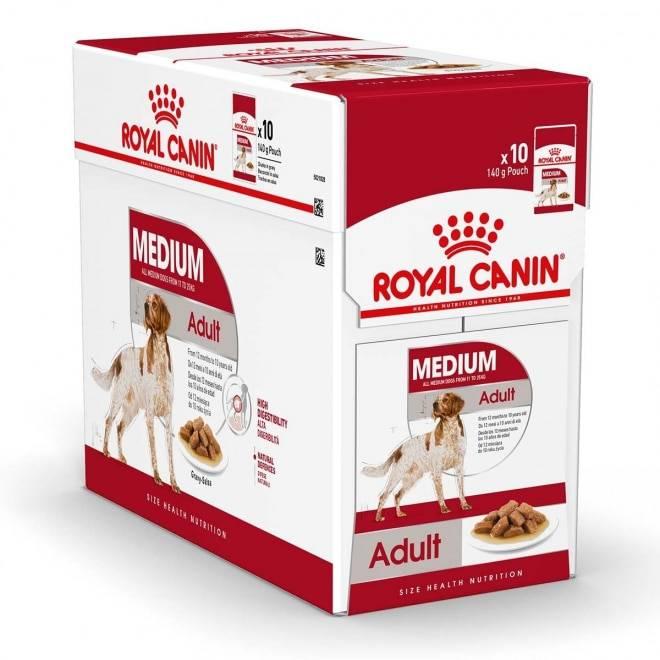 Рейтинг кормов для собак при пищевой аллергии - топ 10 в 2020 году