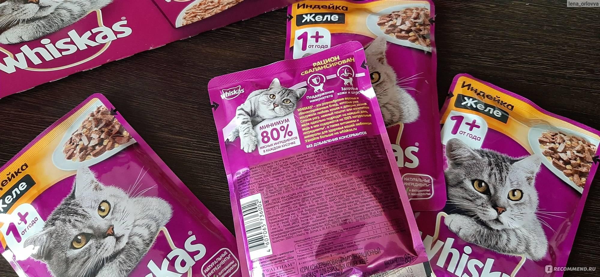 Информация для тех, кто кормит кошек вискасом. - наши британцы! - страна мам