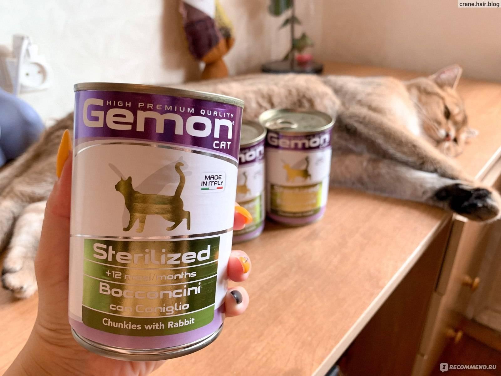 Корм monge для кошек: состав, ассортимент, особенности рационов  - mimer.ru