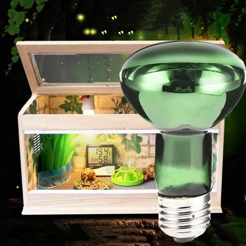 Как выбрать ультрафиолетовую лампу для черепах