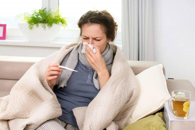 Аллергия у собак — симптомы, лечение и профилактика заболевания