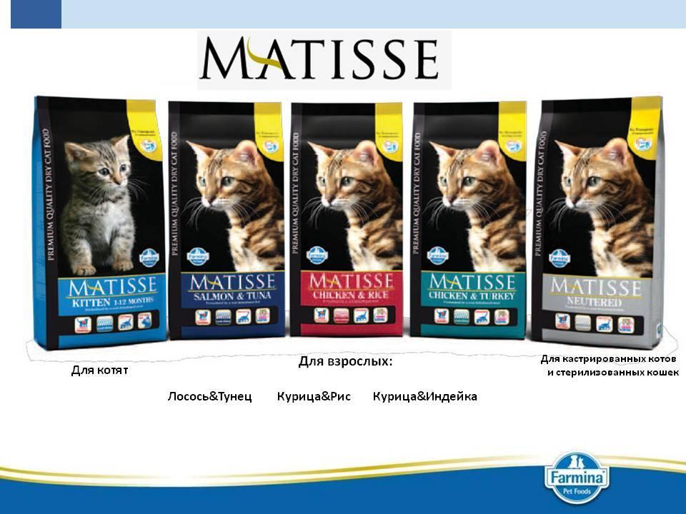 Farmina matisse kitten - рейтинг, обзор корма, сравнение и анализ farmina matisse kitten, состав и описание корма, плюсы и минусы farmina matisse kitten, отзывы о корме, характеристика и дозировка