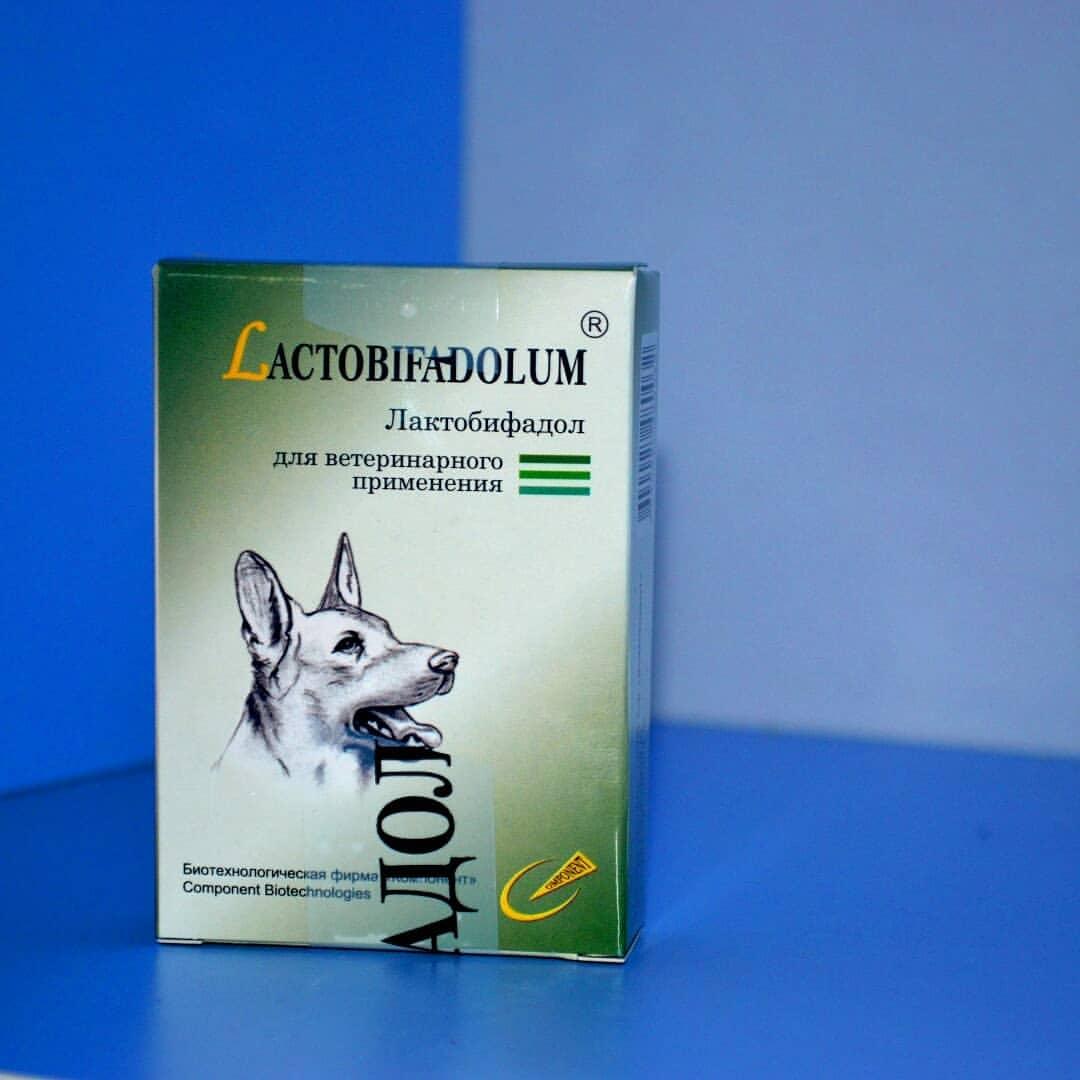 Интерспектин-l для собак: инструкция по применению при опасных для жизни собаки инфекциях
