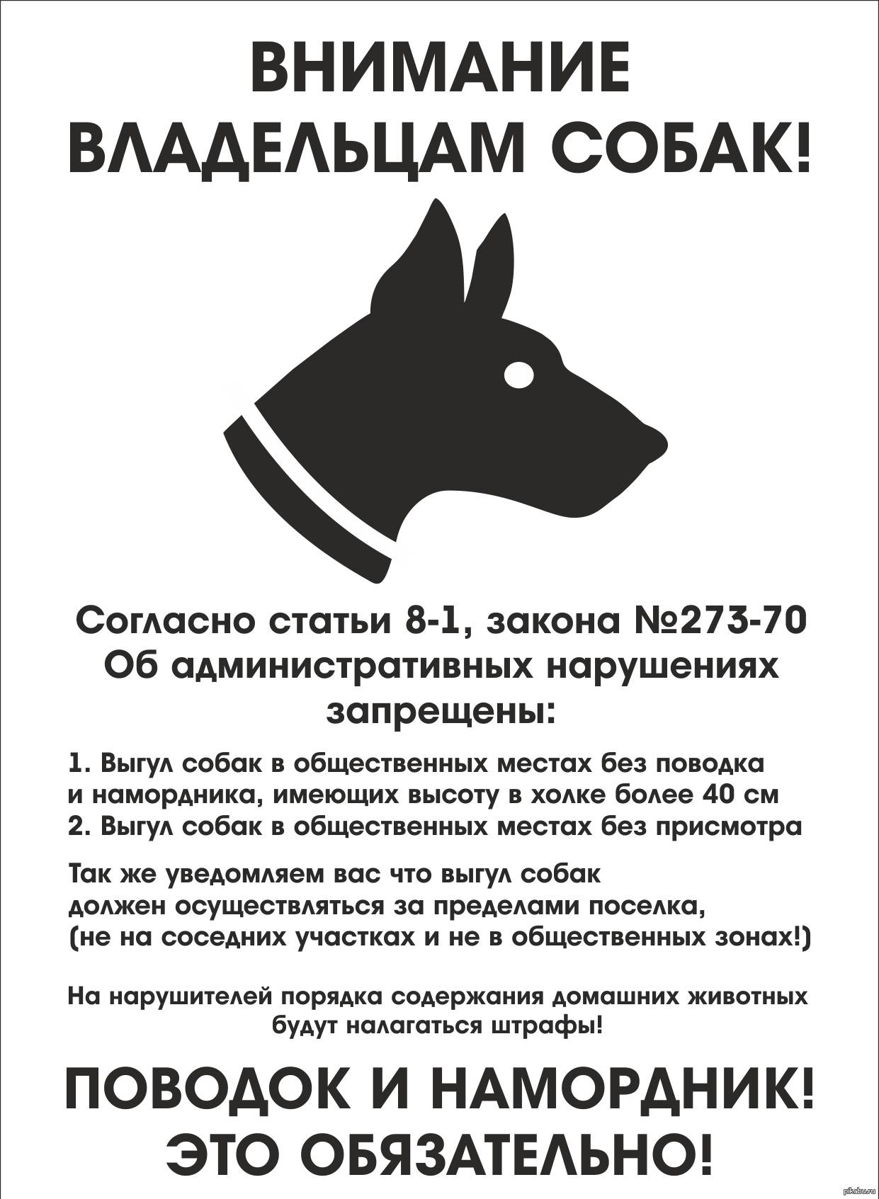 Правила и закон о выгуле собак 2021: намордники, поводки и их отсутствие, где можно гулять и ответственность за нарушение