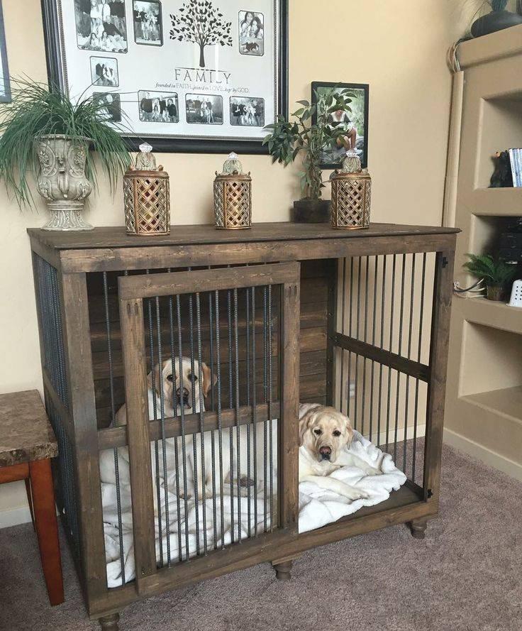 Вольер для собаки в квартире — как создать комфорт для питомца