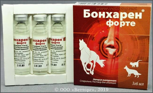 Бонхарен как решение при болезнях суставов у животных