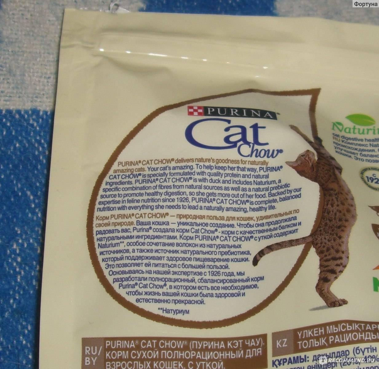Лучший корм для кошек и котов по мнению ветеринаров