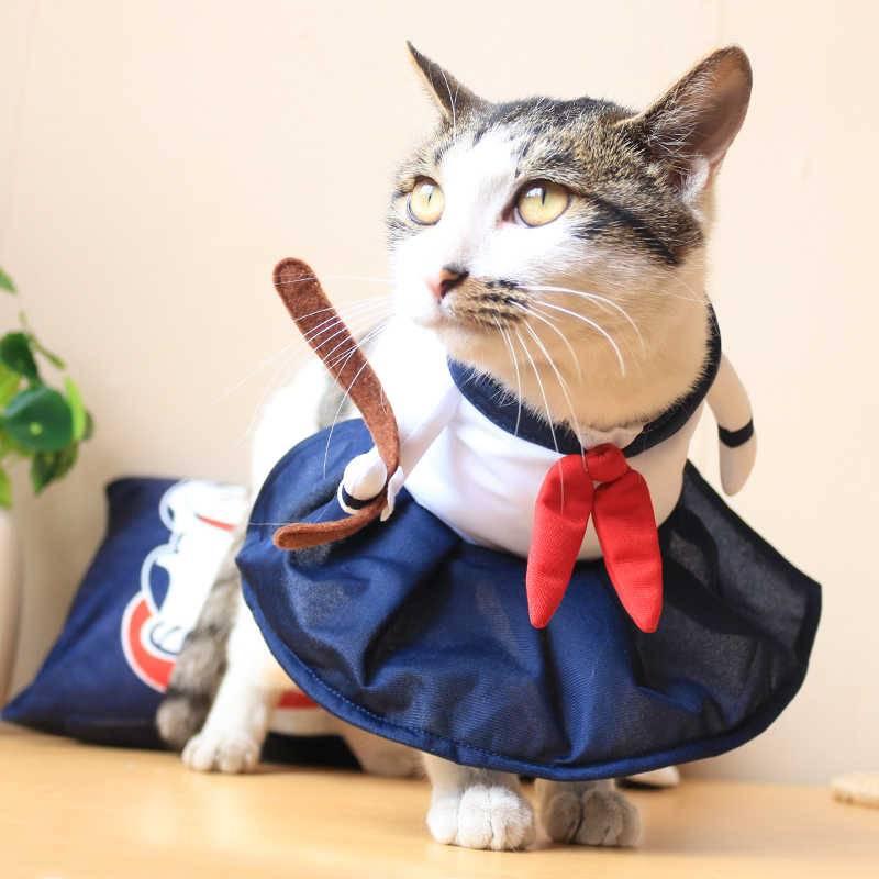 Порядок пошива попоны и прочей одежды для кошек