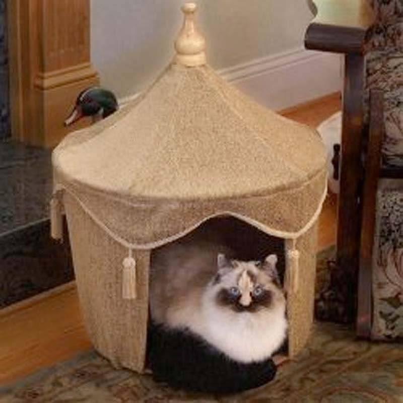 19 причин, почему каждому нужен свой кот!!!)) - усатый-полосатый - медиаплатформа миртесен
