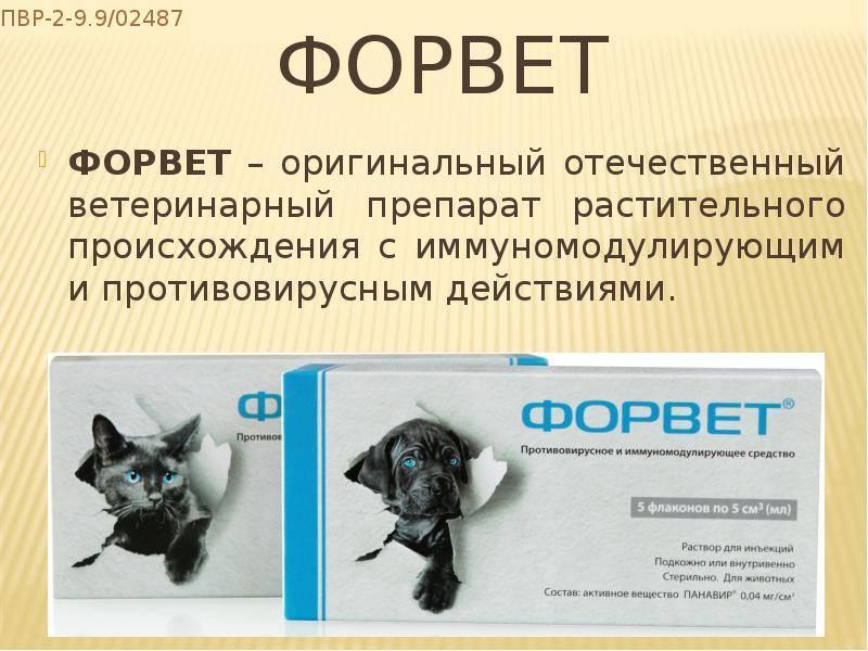 Противовирусный препарат форвет: общие сведения, инструкция