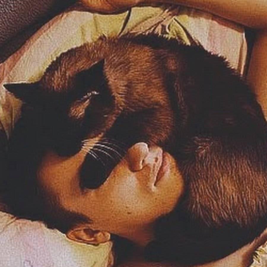 Почему кошки спят на человеке?