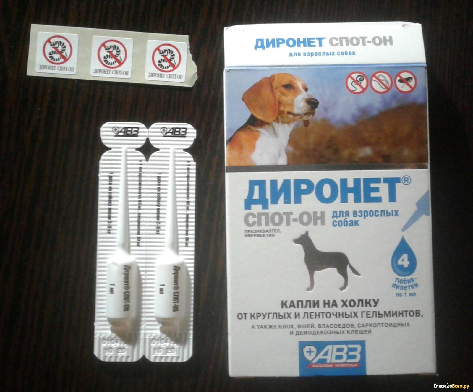 Диронет спот-он для кошек - купить, цена и аналоги, инструкция по применению, отзывы в интернет ветаптеке добропесик