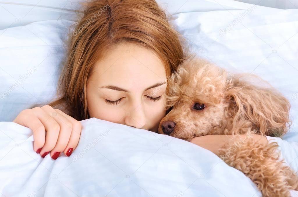 Сон в компании кошки или собаки: плюсы и минусы