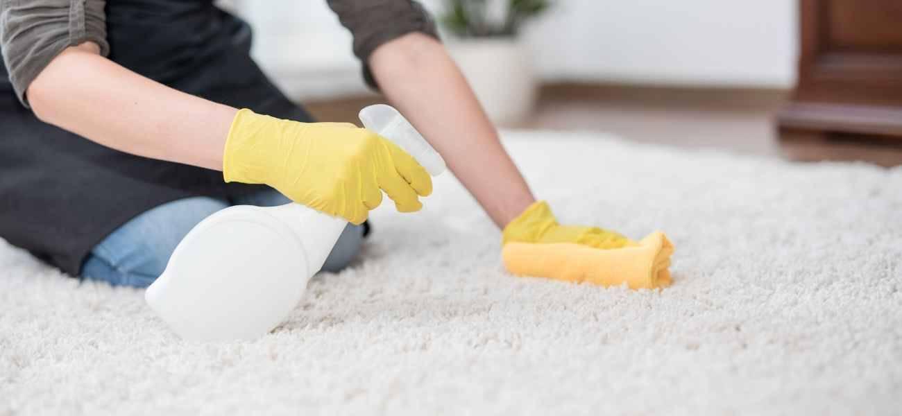 25 способов избавиться от запаха кошачьей мочи в квартире в домашних условиях