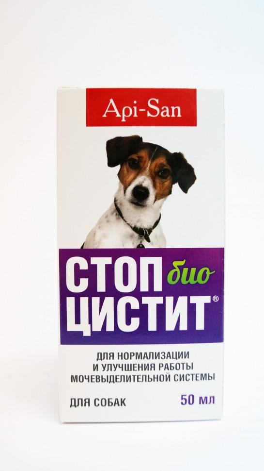 Суспензия стоп-цистит био для собак, 50 мл