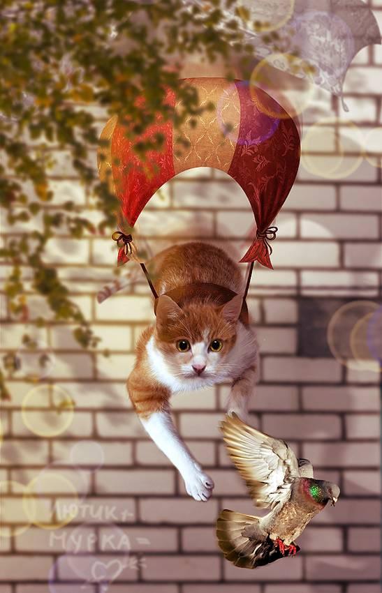 """У кошки """"весна"""", подскажите как справиться?"""
