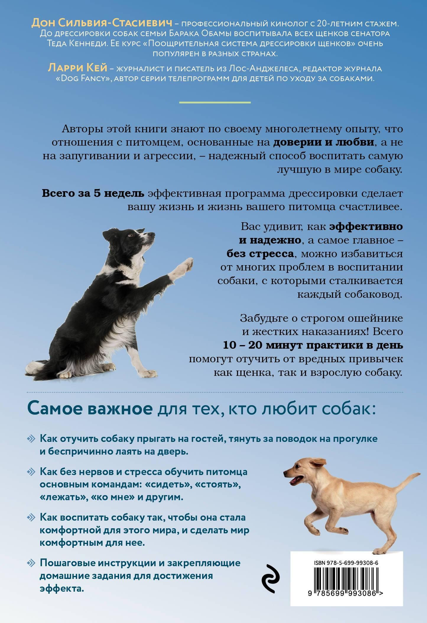 Уход за щенком французского бульдога, помощь новорожденным щенкам, прикорм, кормление в первые месяцы жизни, купание, прививки, приучение к лотку, дрессировка.