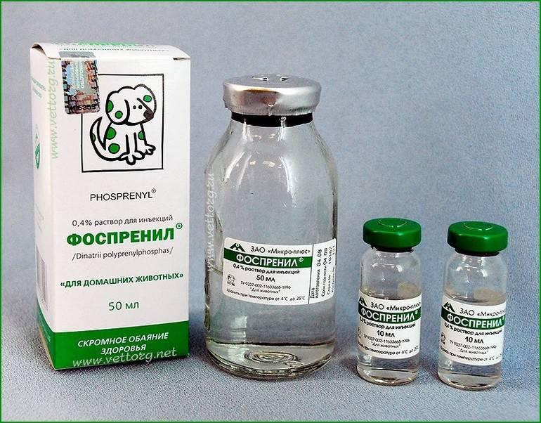 Краткая инструкция по применению препарата фоспренил