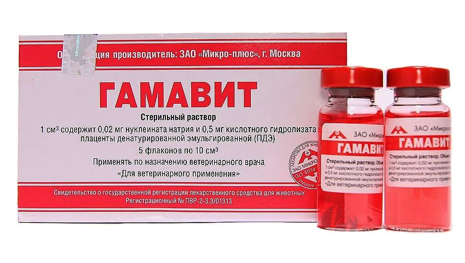 Гамавит, общеукрепляющий, иммуномодулирующий препарат