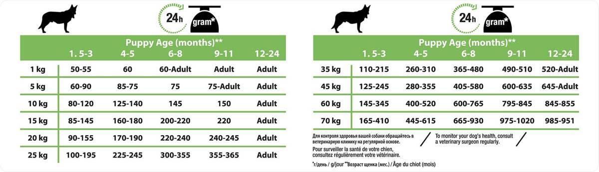 Корм для собак мелких пород — рейтинг лучших 2020