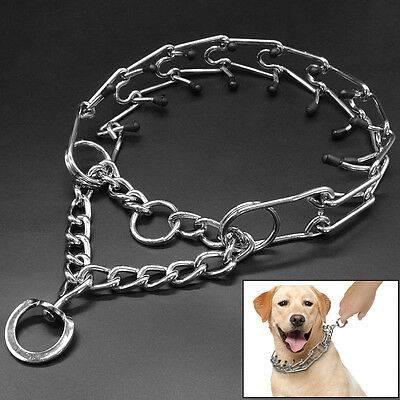 Как сделать ринговку для собаки своими руками: пошаговая схема и инструкции, мастер-класс