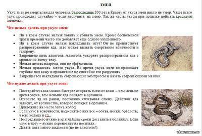 Первая помощь при укусах ядовитых змей