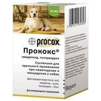 Прококс (procox), препарат против глистов и простейших паразитов