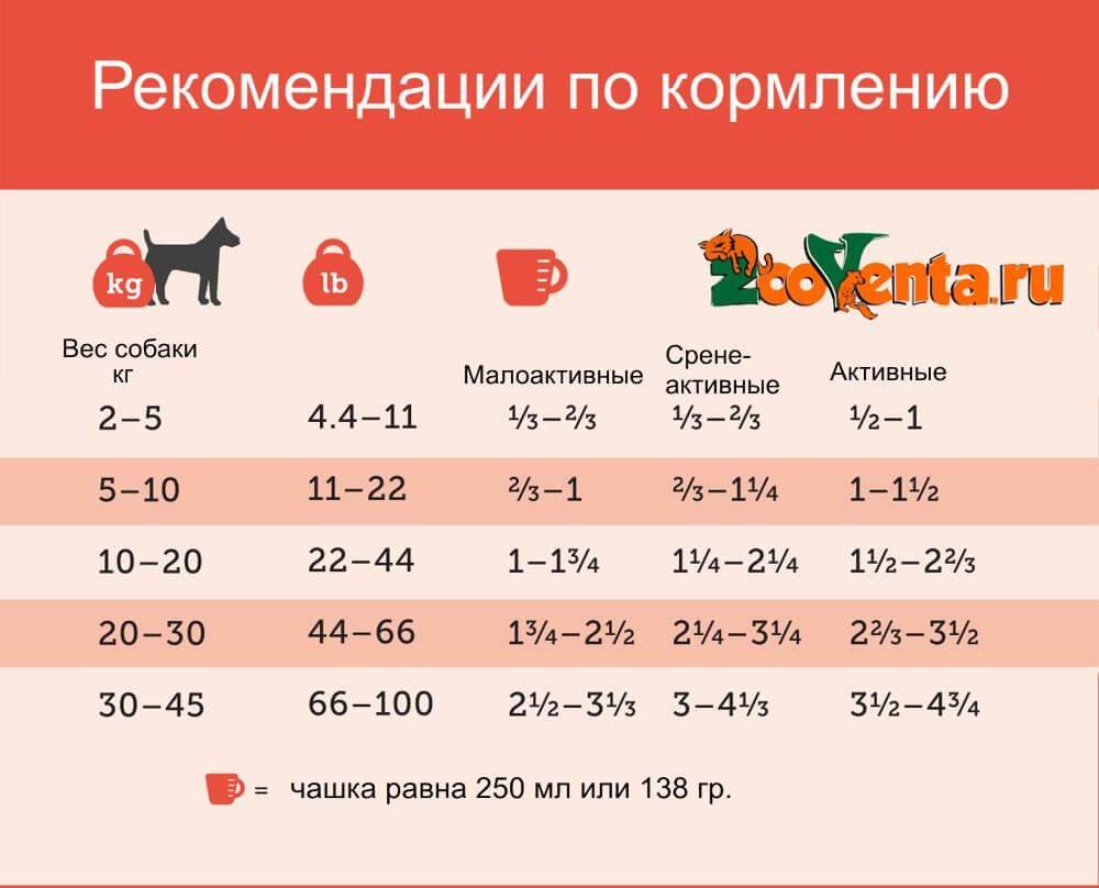 Как рассчитать рацион питания собаки по таблице?