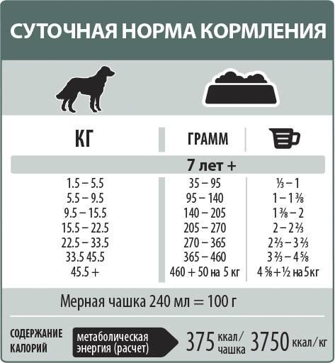 Как правильно кормить собаку: сухими кормами или натуральное кормление, как расчитывать дозы еды, как избежат ожирения