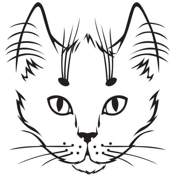 Как нарисовать кошку для детей поэтапно легко и красиво