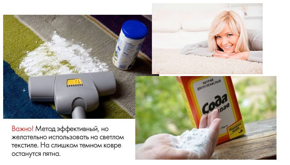 Как избавиться от кошачьего запаха в квартире: не опускайте руки! советы по избавлению от запаха кошачьей мочи от «бывалых»