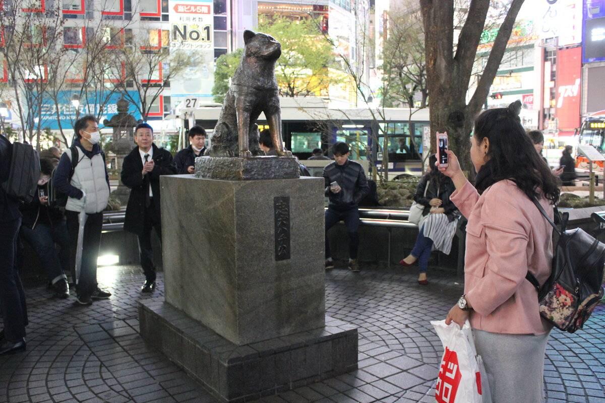 Хатико: памятник в токио. памятники собаке хатико в японии