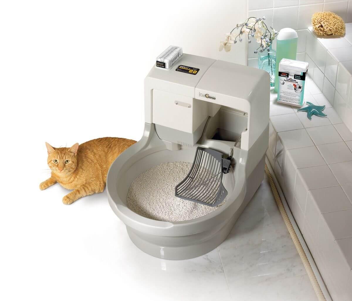 Топ 20 лучшие наполнители для кошачьего туалета (рейтинг 2021)