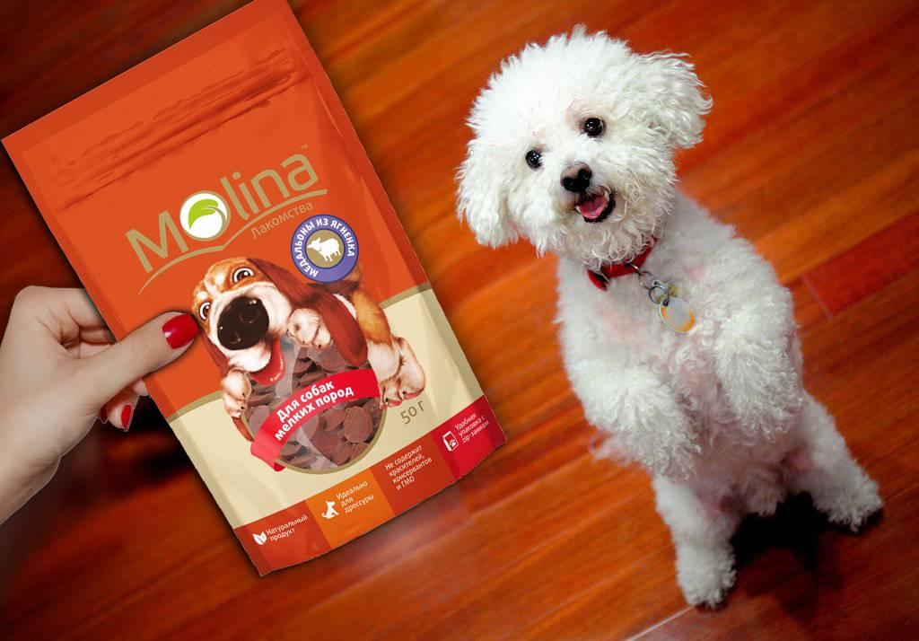 Лакомство для собак своими руками: из печени, лёгкого и бульона (фото и видео рецептов)