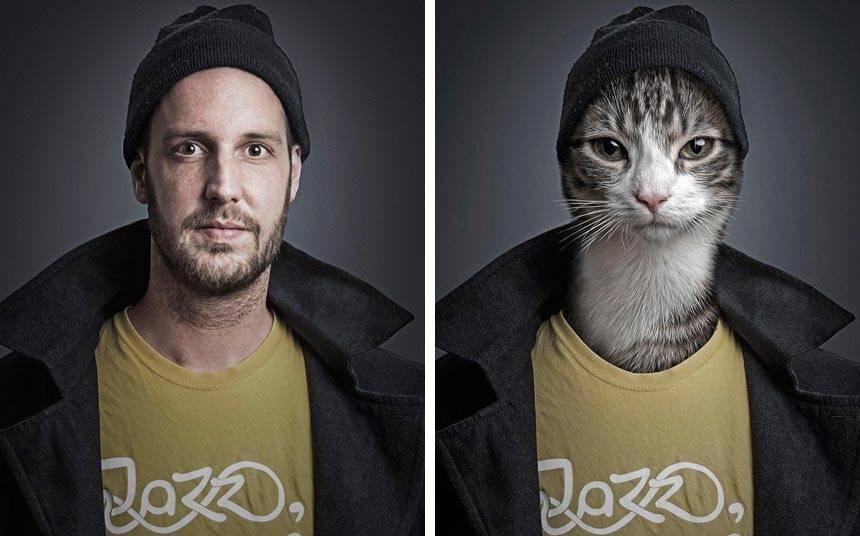 Видят ли кошки параллельные миры: владельцы животных и учёные разошлись во мнении
