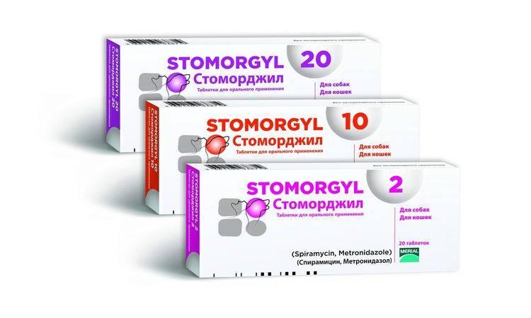 Средства от пародонтоза: антибиотики, мазь, трихопол, полоскание